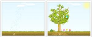 Neuronation Baum Seedmatch