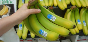 FoodLoop Bananen
