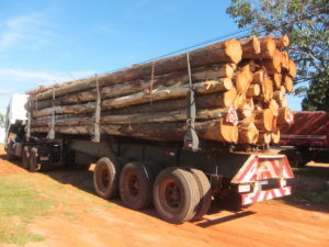 Holztransport der Miller Forest Investment AG